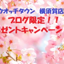 新生活応援キャンペーン実地中!!