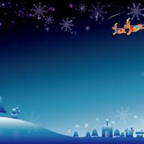 クリスマスにペアはいかがですか?