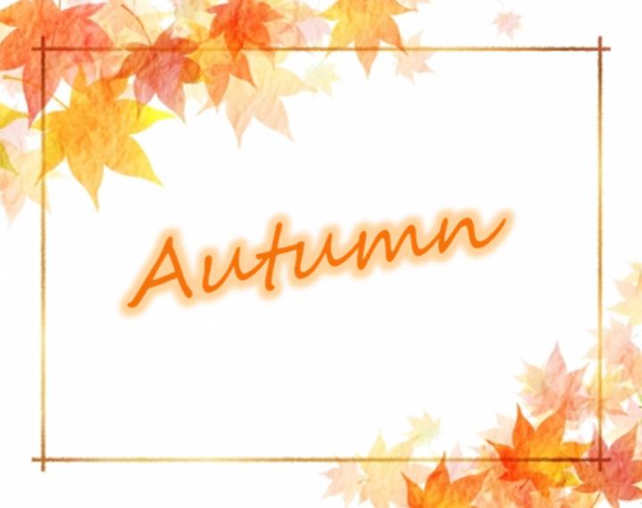 秋にお勧めの時計をご紹介いたします!
