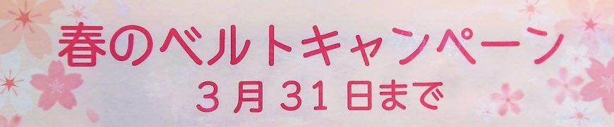 春のベルトキャンペーン開催中!!