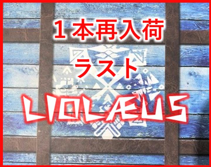 リオレウス LIOLAEUS SBPY155 限定品 1本入荷!!