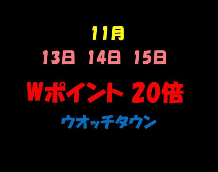 Wポイント 20倍キャンペーン!!!