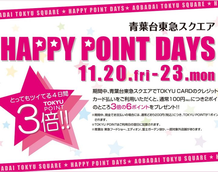 ☆★ HAPPY POINT DAYS! and BLACK FRIDAY!★☆
